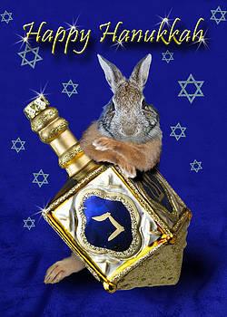 Jeanette K - Hanukkah Bunny rabbit