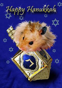 Jeanette K - Hanukkah Hamster