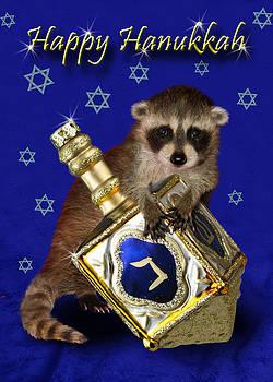 Jeanette K - Hanukkah Raccoon