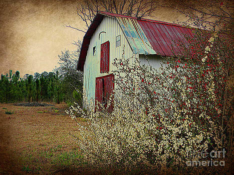 Happy Barn in Spring by Lorraine Heath