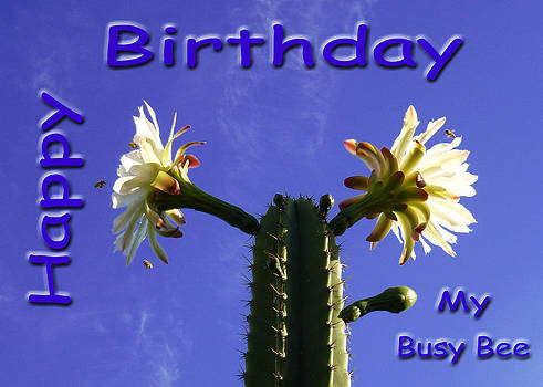 Happy Birthday Card And Print 2 by Mariusz Kula