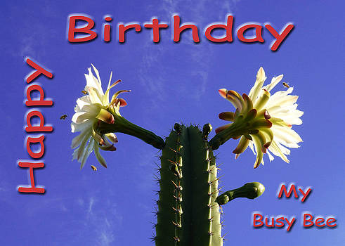 Happy Birthday Card And Print 3 by Mariusz Kula