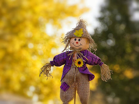 Happy Fall by Michael Huddleston