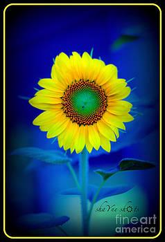 Happy Flower by Shayne Johnson Fleming