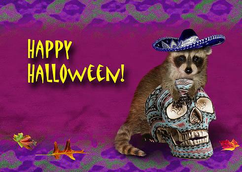Jeanette K - Happy Halloween Raccoon