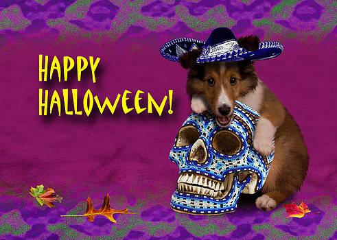 Jeanette K - Happy Halloween Sheltie Puppy