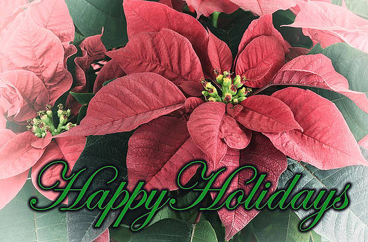 Happy Holidays Greeting Card by Claudio Bacinello