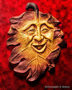 Christopher Holmes - Happy Leaf