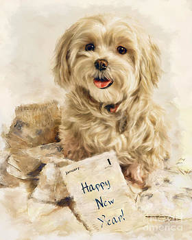 Maltese Happy New Year by Andrea Auletta