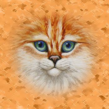 Crista Forest - Happy Orange Kitty Pillow