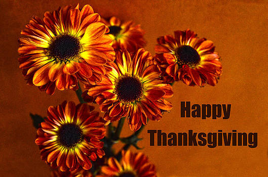 Happy Thanksgiving Mums by Sandi OReilly