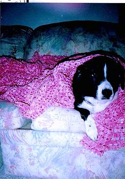 Anne-Elizabeth Whiteway - Happy Under her Pink Crocheted Blanket