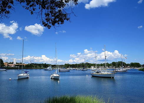Harbor View by Scott Schlaff