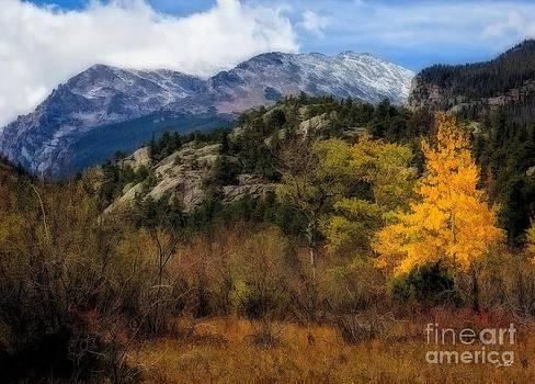 Jon Burch Photography - Hard Winter Coming