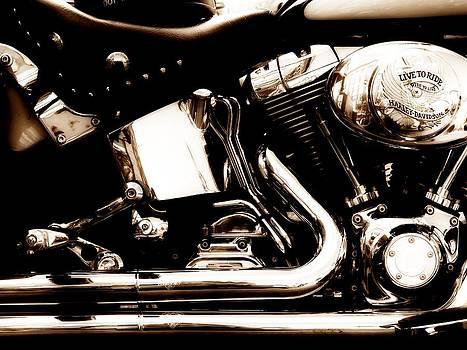 Harley Davidson by Greg Bush