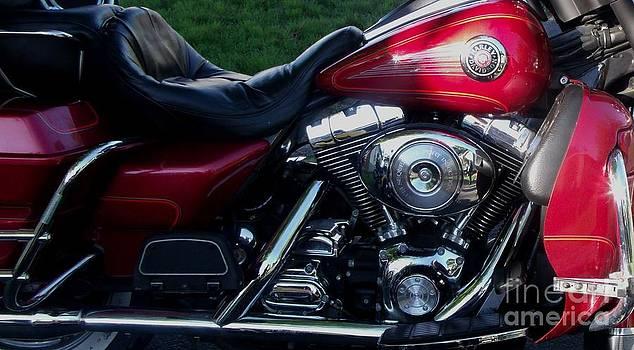 Gail Matthews - Harley Davidson Motorcycle Side View