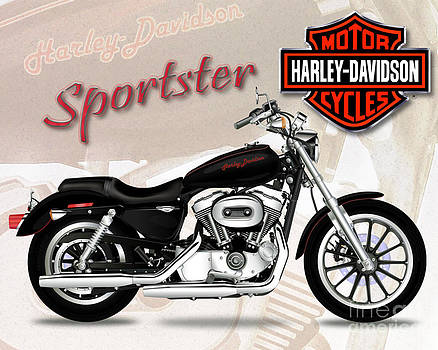 Harley Sportster by Michael Lovell