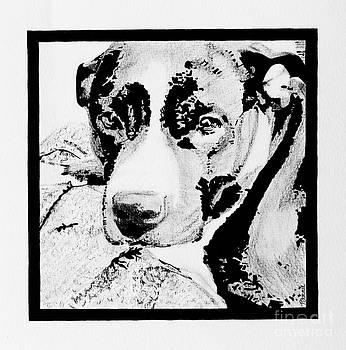 Harlow Jean #1 by Bonnie Cushman