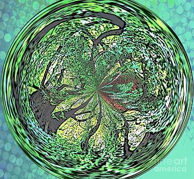 Harmony With Nature by Judy Palkimas