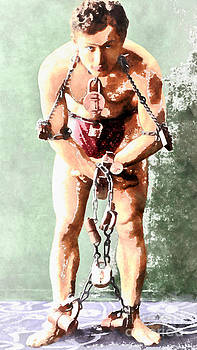 Wingsdomain Art and Photography - Harry Houdini 20140222wc