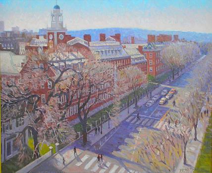 Harvard Square by Dianne Panarelli Miller
