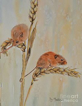 Harvest Mice by Betty Mulligan