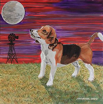 Harvest Moon Beagle by Mike Nahorniak