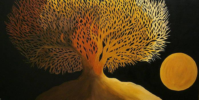 Harvest Moon by Drew Shourd