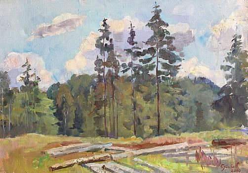 Harvesting areas by Alexander Stolbov