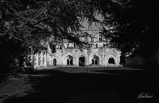 Diana Haronis - Haunted Abbey