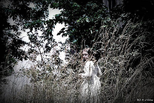 Haunting  by Genevieve Price