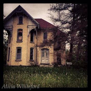 Hauntingly Beautiful  by Alicia Whiteford