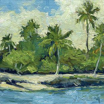 Stacy Vosberg - Hawaii Island Lagoon