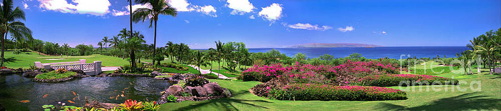 David Zanzinger - Hawaii Wailea Gold Course Golf Course Panorama 2