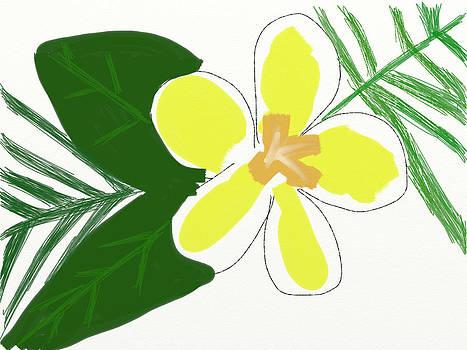 Hawaiian Plumeria Flower by Savvycreative Designs