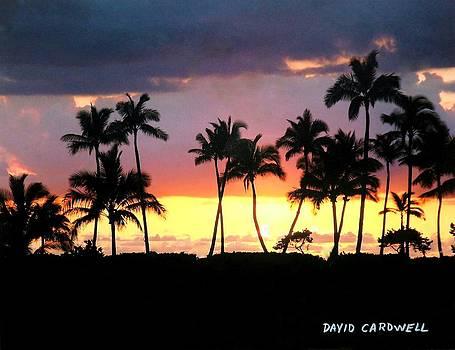 Hawaiian Sunset by David Cardwell