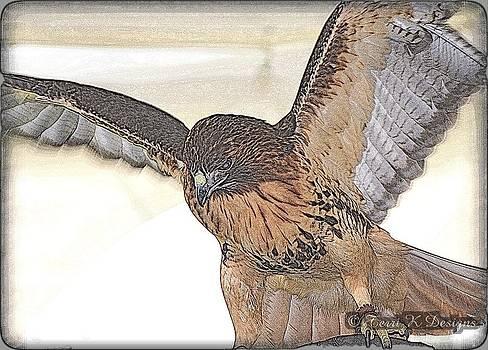 Hawk Sketch by Terri K Designs