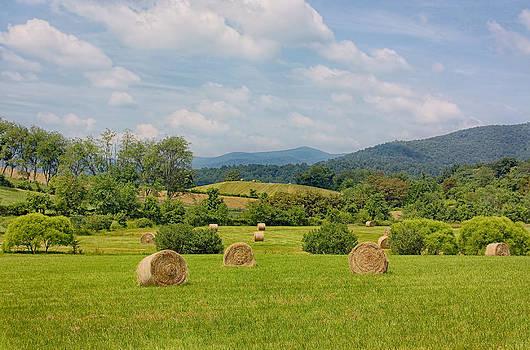 Kim Hojnacki - Hay Bales in Farm Field