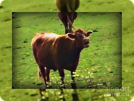Gail Matthews - Hay Wish Moo Would Eat More Chicken