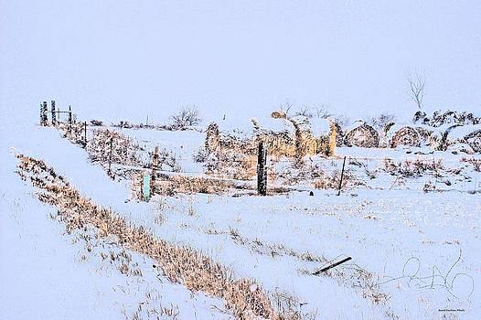 Haybales in the Snow by Scott Carlton