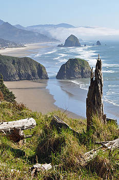 Haystack Rock at Oregon's Ecola State Park by Bruce Gourley