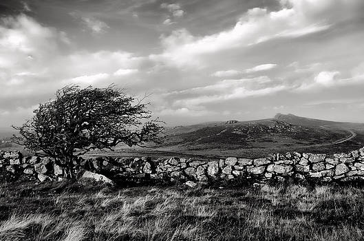 Haytor view by Pete Hemington