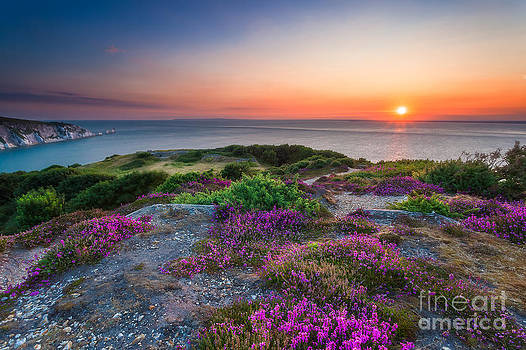 English Landscapes - Headon Warren Sunset