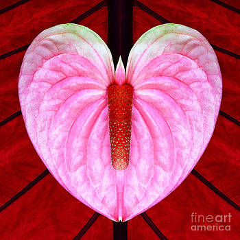 Heart Flower Butterfly w Candle by Joseph J Stevens
