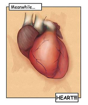 Heart by Matthew Schenk