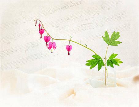 Hearts and Music by Sarah-fiona  Helme