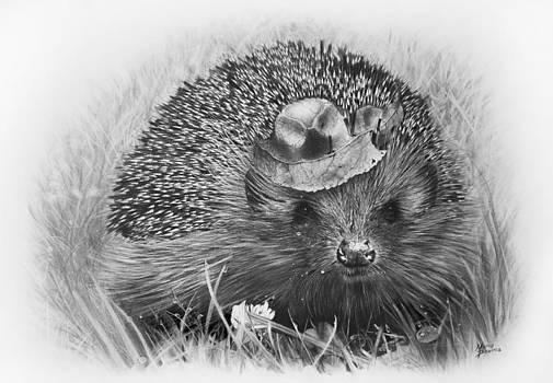 Hedgehog by Maria Bozina