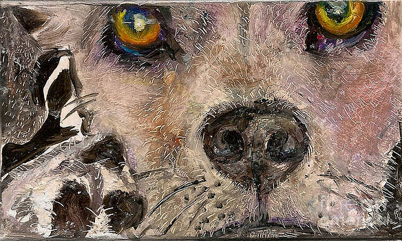Hello Dog by Donna Chaasadah