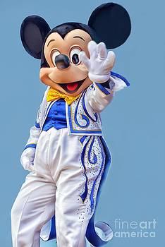 Hello From Mickey by Arnie Goldstein