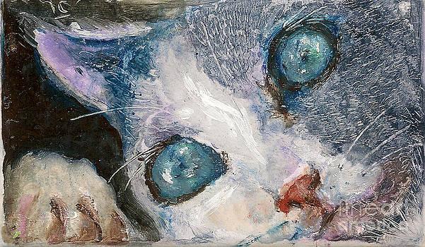 Hello Kitty by Donna Chaasadah